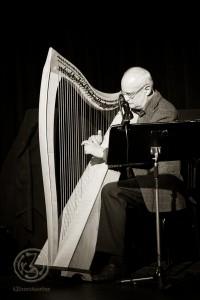 Andreas Buschmann verzauberte mit seinem einfühlsamen Harfenspiel. Foto: Anders Balari