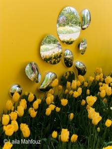 Grandiose Spiegeleffekte