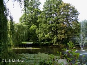 Ein See mitten im Landschaftspark.