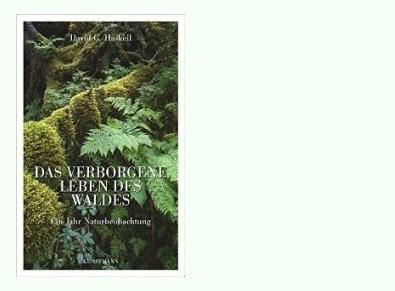 Rezension zu David George Haskells Sachbuch »Das verborgene Leben des Waldes – Ein Jahr Naturbeobachtung« / »The Forest Unseen: A Year's Watch in Nature«