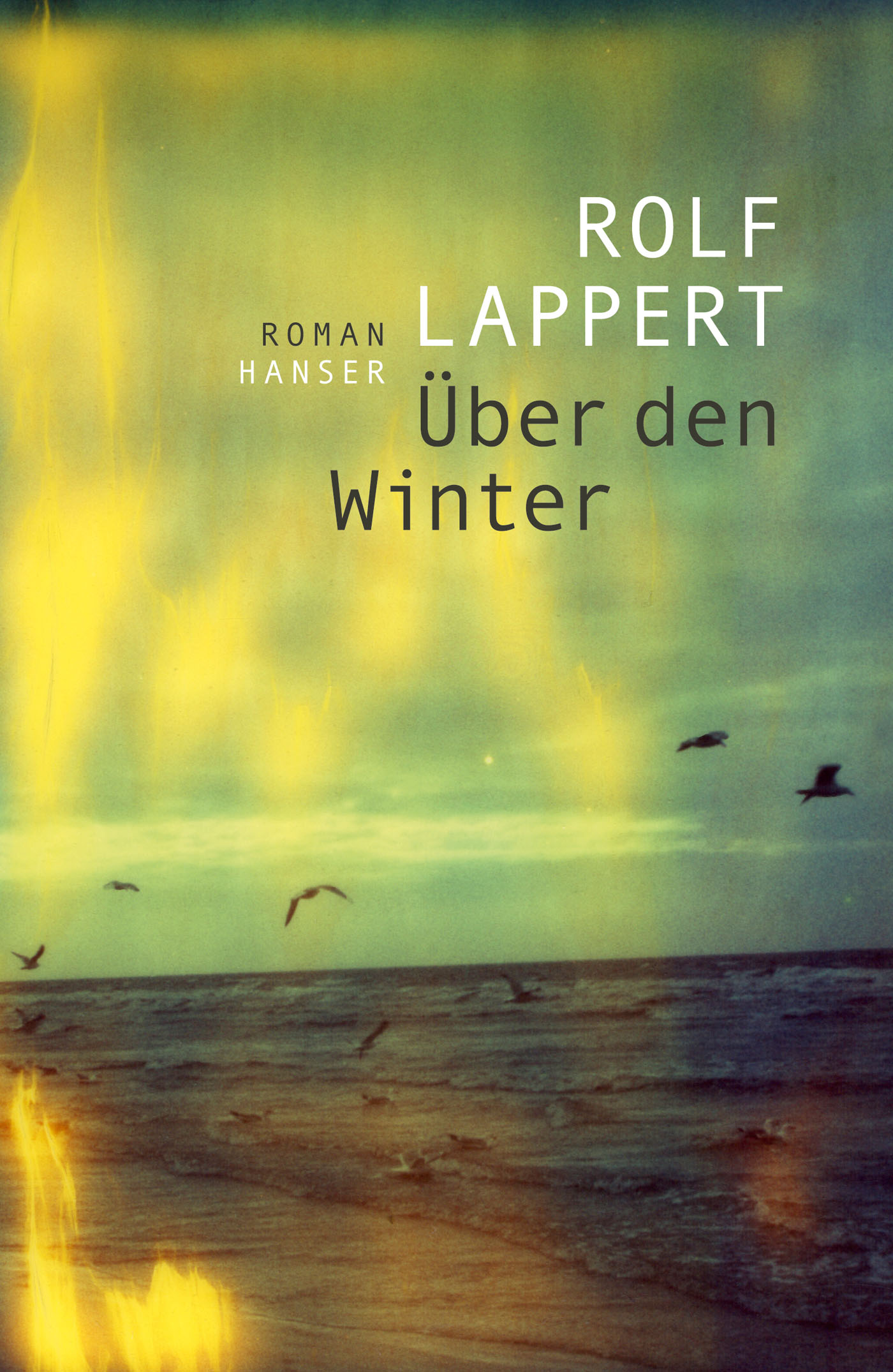 Rolf Lappert Über den Winter