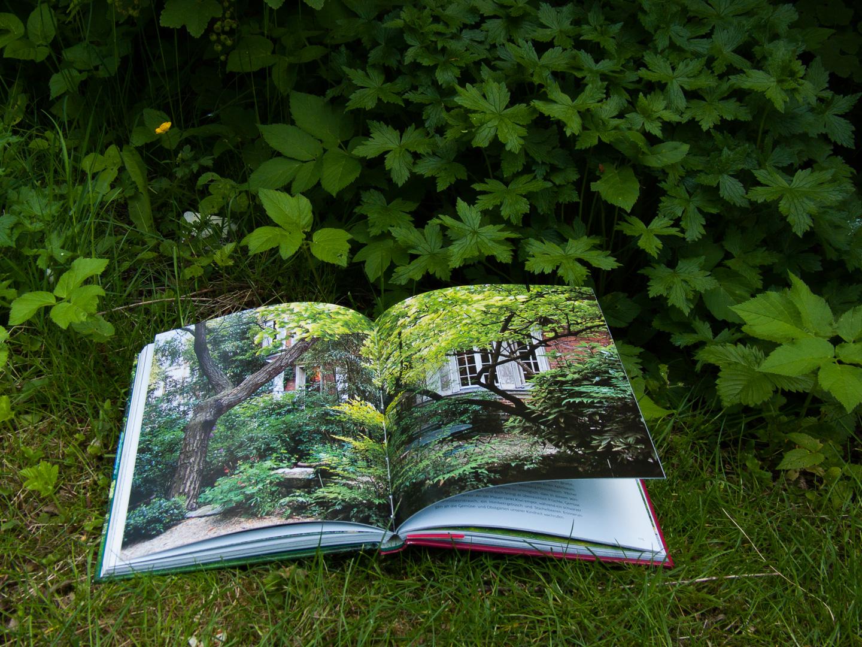 Malerische Gärten: Ein üppiger Garten von Camille Muller - Seite 102-107