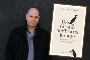 Rezension zu Florian Werners »Die Weisheit der Trottellumme – Was wir von Tieren lernen können«